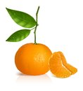 Fresh tangerine with green leaves and slices. Stock Photo