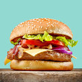 Fresh tasty burger Royalty Free Stock Photo