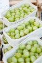 Fresh tasty gooseberries macro closeup on market outdoor Royalty Free Stock Photo