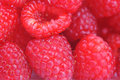 Fresh and tasty raspberry Royalty Free Stock Photo