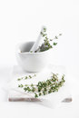 Fresh thyme in mortar bunch of served a white with pestle on a white chopping board taken on a white background Stock Photos