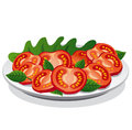 Fresh tomato salad illustration of with lettuce Royalty Free Stock Images