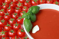 Fresh tomato soup Stock Image