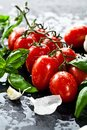 Fresh tomatoes with basil garlic and sea salt on black slate background Royalty Free Stock Photo