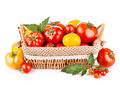 Fresh tomatoes in the basket Stock Images