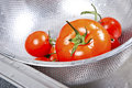 Fresh tomatoes in colander splashing in water kitchen Stock Image