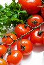 Fresh tomatoes stem closeup Royalty Free Stock Photos