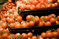 Fresh tomatoes in supermarket lots of Stock Photography