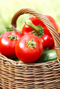 Fresh tomatoes in a wicker basket vegetables organic gardening Royalty Free Stock Photography