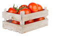 Fresh tomatoes in a wooden crate isolated on white background Stock Photos