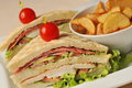 Fresh triple decker hotel club sandwich with french fries on side Royalty Free Stock Image