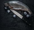 Fresh trouts with ice and knife Royalty Free Stock Photo