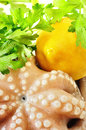 Fresh uncooked octopus Royalty Free Stock Image