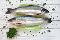 Fresh uncooked salmon on green plate with parsley and peas Royalty Free Stock Photo