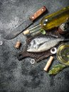 Fresh unprepared Dorado fish with white wine. Royalty Free Stock Photo