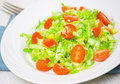 Fresh vegetable salad with cherry tomatoes and cabbage on plate Stock Photography