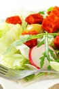 Fresh vegetable salad with diced cheese paprika coated Royalty Free Stock Image