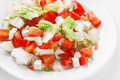 Fresh vegetable salad with feta cheese and tomatoes Royalty Free Stock Images