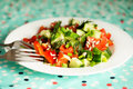 Fresh vegetable salad for the healthy breakfast Stock Image