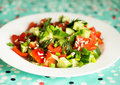 Fresh vegetable salad for the healthy breakfast Stock Images