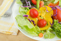 Fresh vegetable salad on plate a Royalty Free Stock Images