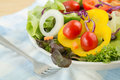 Fresh vegetable salad on plate mixed Royalty Free Stock Photography