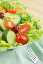 Fresh vegetable salad on plate white with fork Royalty Free Stock Photography