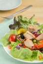Fresh vegetable salad with tuna on plate Stock Photos