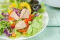 Fresh vegetable salad with tuna on plate Royalty Free Stock Image
