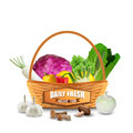 Fresh vegetable in wicker basket on white