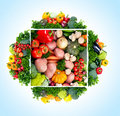 Fresh vegetables. Royalty Free Stock Photo