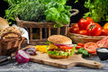 Fresh vegetables as ingredients for homemade hamburger on old wooden table Royalty Free Stock Photos