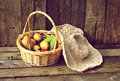 Fresh vegetables in a basket. Royalty Free Stock Photos