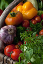 Fresh vegetables basket with farm Royalty Free Stock Images