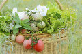 Fresh vegetables in basket with water drops Royalty Free Stock Photography