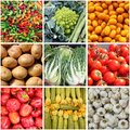 Fresh vegetables collage of backgrounds Royalty Free Stock Photos