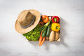 Fresh vegetables in a crate Royalty Free Stock Photo