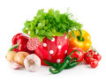 Fresh vegetables with green herbs in watering can Royalty Free Stock Photo