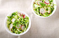 Fresh vegetables salad with cabbage, radishes. dill and greens Royalty Free Stock Photo