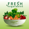 Fresh vegetables in the salad plate Royalty Free Stock Photo