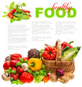 Fresh vegetables shopping basket healthy nutrition and herbs on white background organic diary products food concept with sample Stock Images