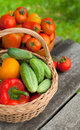 Fresh vegetables on wooden garden table Royalty Free Stock Image