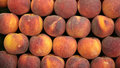 Fresh velvet skin peaches Royalty Free Stock Photo