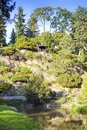 Fresh vivid green vegetation with flowers and rock in outdoor park Pruhonice near Prague, Czech Republic in sunny day Royalty Free Stock Photo