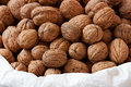 Fresh walnuts with shell in a white bag Royalty Free Stock Images