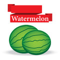 Fresh watermelon on white background vector