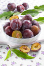 Fresh wet plums with leaves in the bowl on the vin Stock Photo