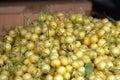 Fresh white cherries natura whitel cherry on the street market to background Royalty Free Stock Images