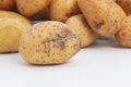 Fresh whole raw potato damaged during harvesting with a cut through the skin which is discolouring Stock Photos