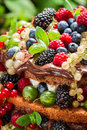 Fresh wild berry fruits in a cake closeup of Stock Images